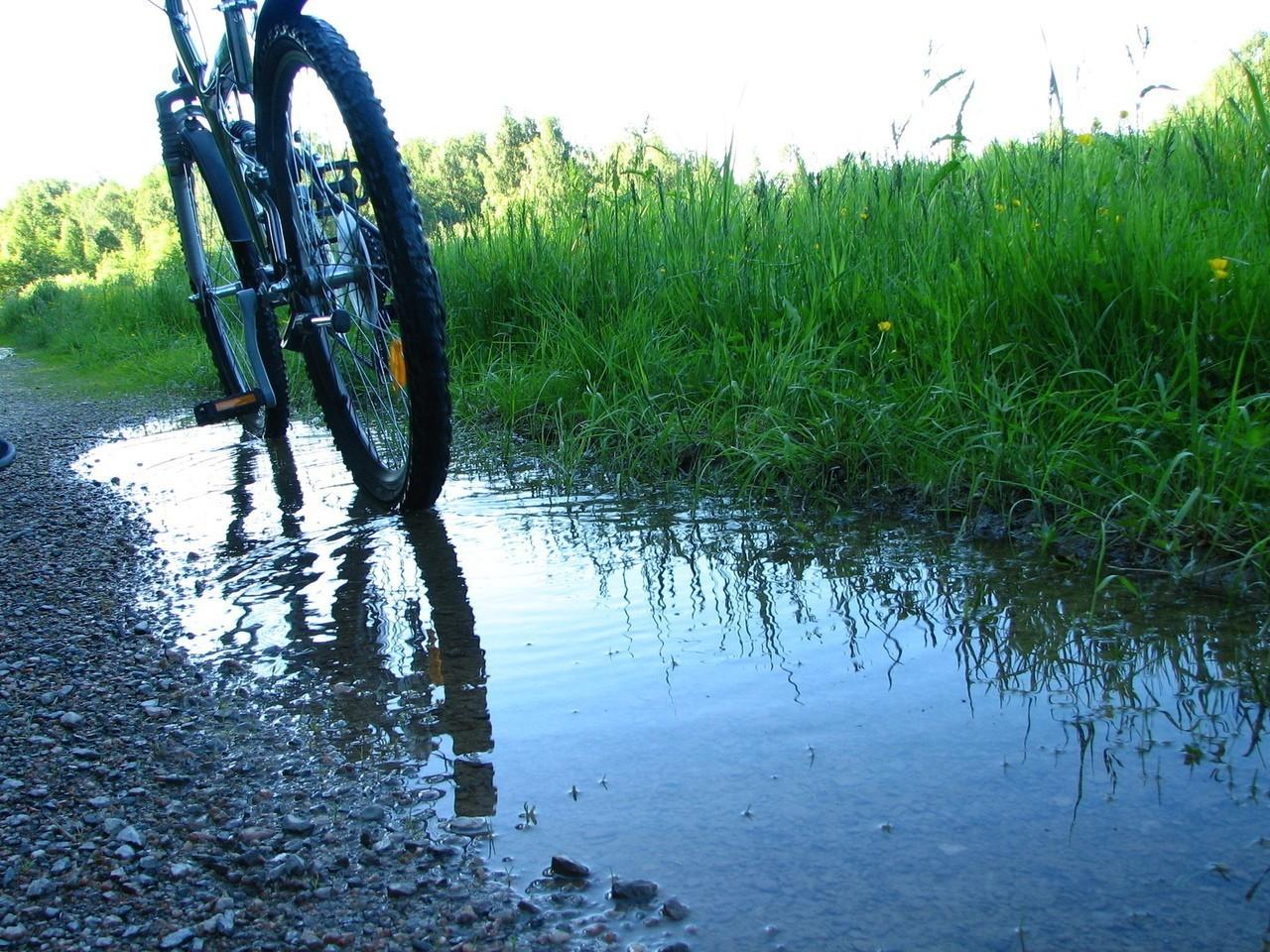 Nowocześnie zabezpieczony rower